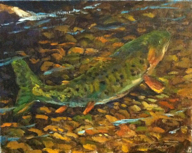 aug12ColoradoCutthroatTrout8x10