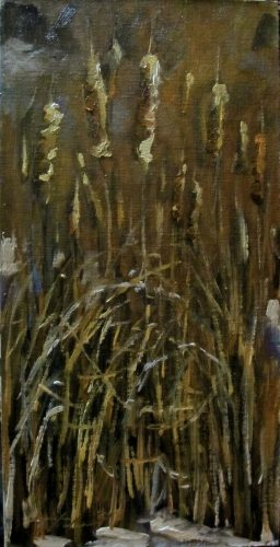 jan14Cats1of36x12