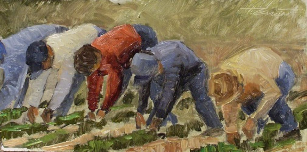 june16-PlantingTheFields-6x12w2