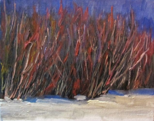 march12RedWillows1_8x10